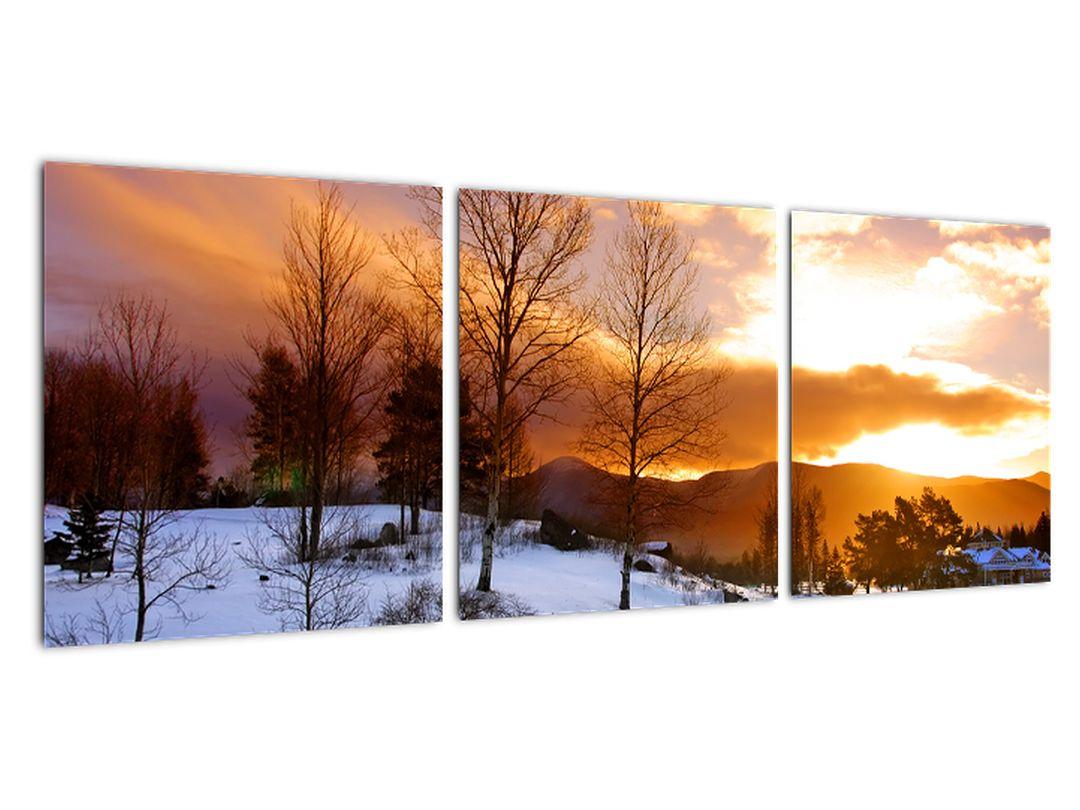 Slika zimske pokrajine