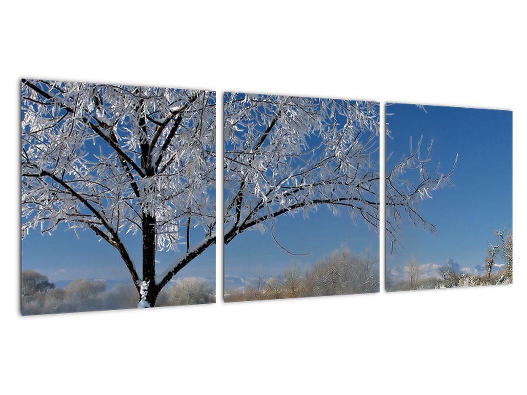 Slika - zamrznjena zimska pokrajina