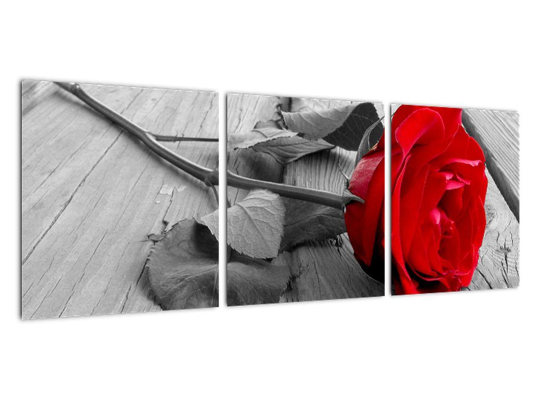 Slika - vrtnica z rdečim cvetom