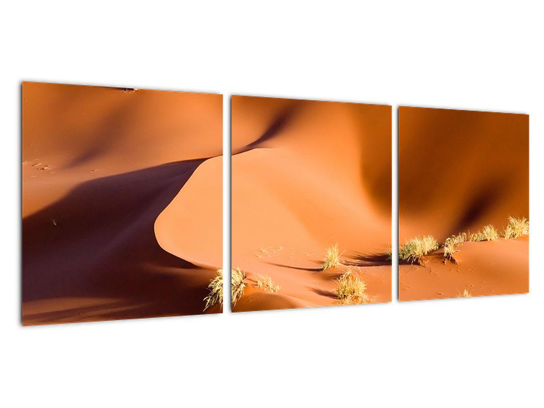 Slika - puščavske sipine