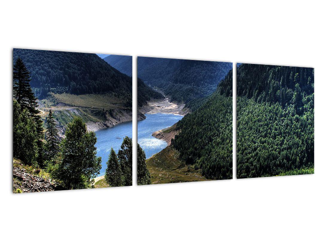 Slika - reka med gorami