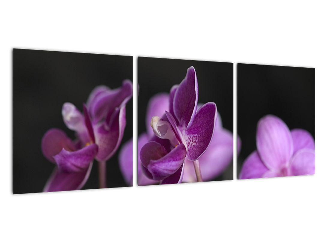 Barvanje - cvetje