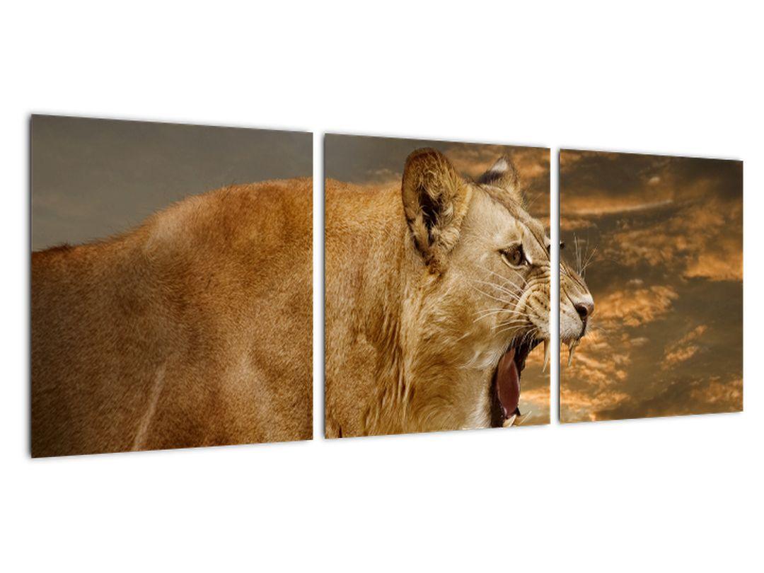 Slika - rjoveči lev