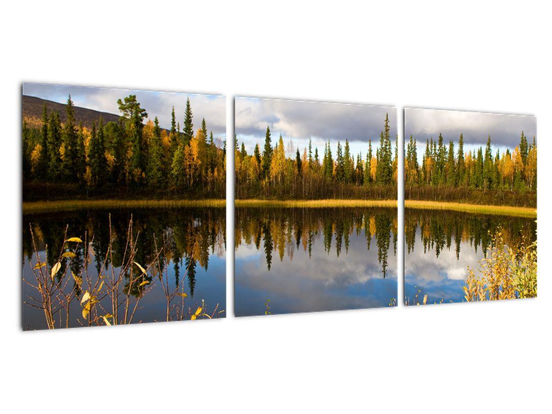 Slika na steni - gozdno jezero