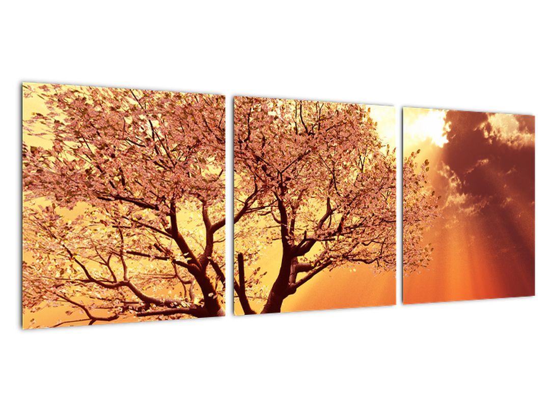 Moderna slika - drevo