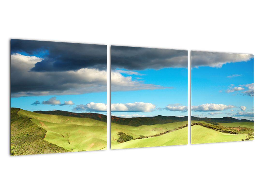 Slika - travnik
