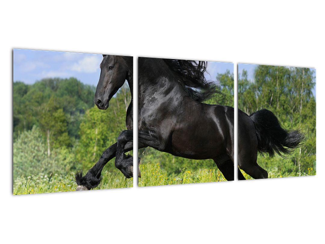 Slika - konji