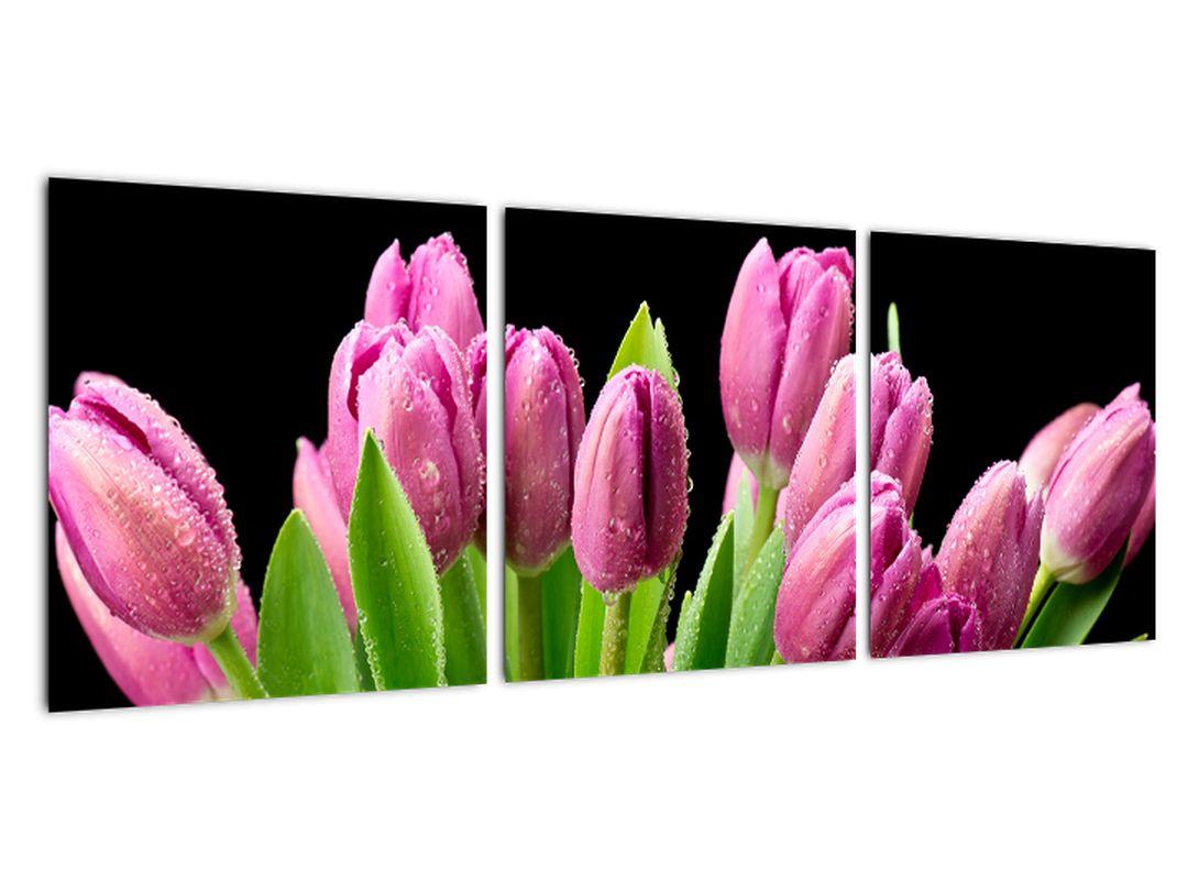 Slika - tulipani