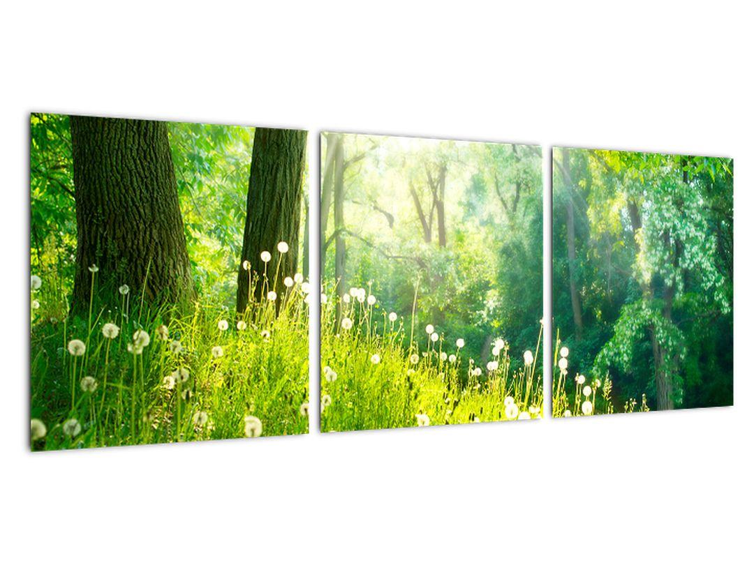Moderne slike - narava