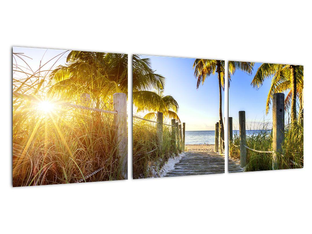 Moderna slika - tropski raj