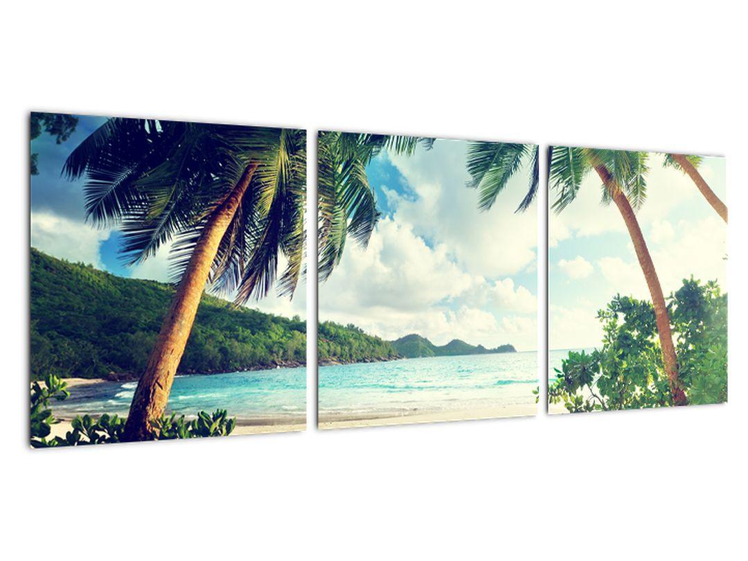 Slika - palme na plaži