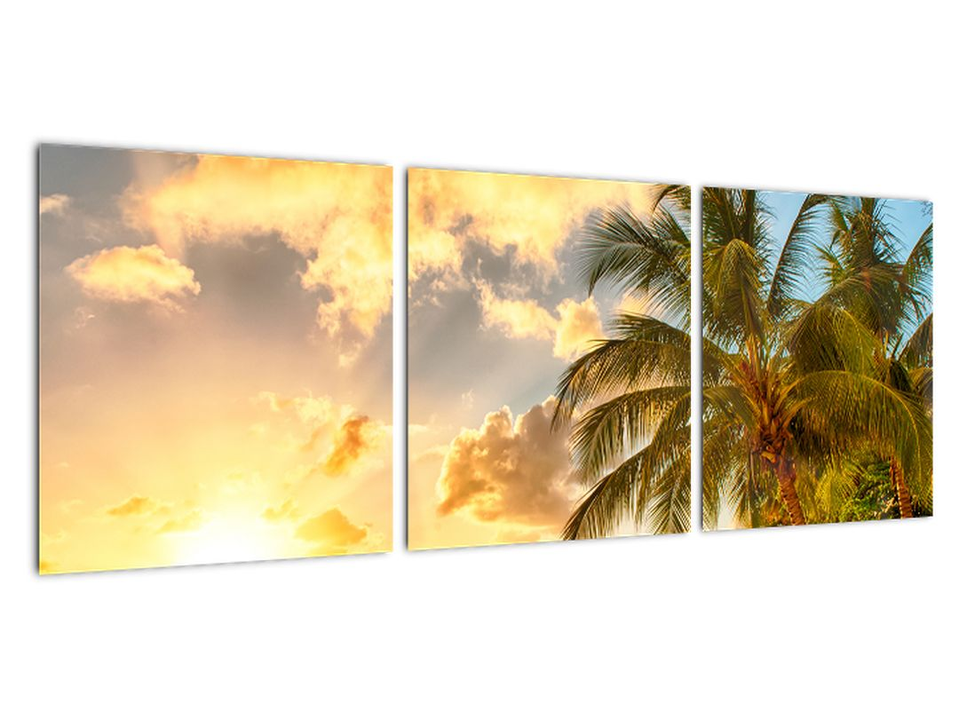 Slika - palme na peščeni plaži