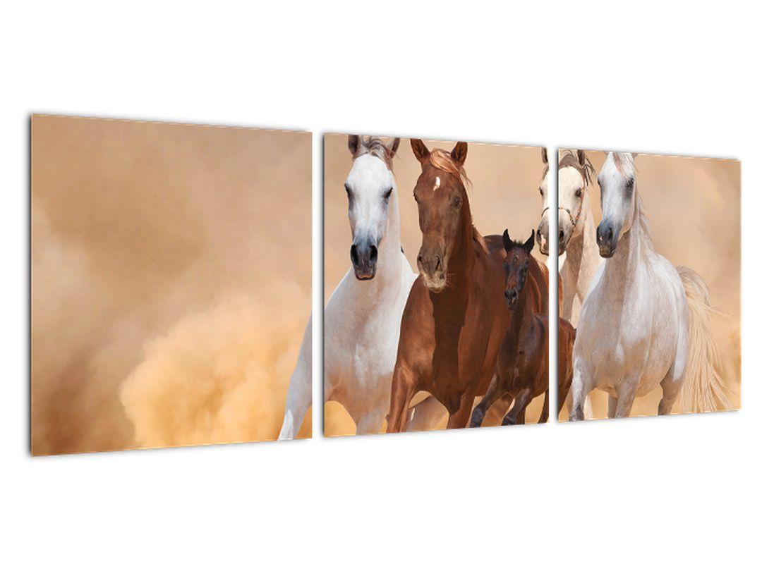 Slike - tekaški konji