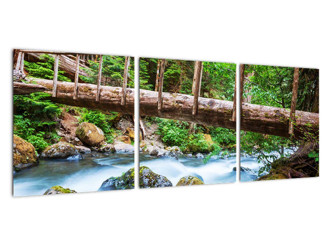 Moderne slike - gorski potok