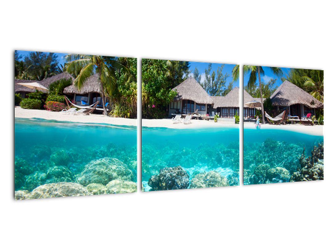 Morje v tropih - slika