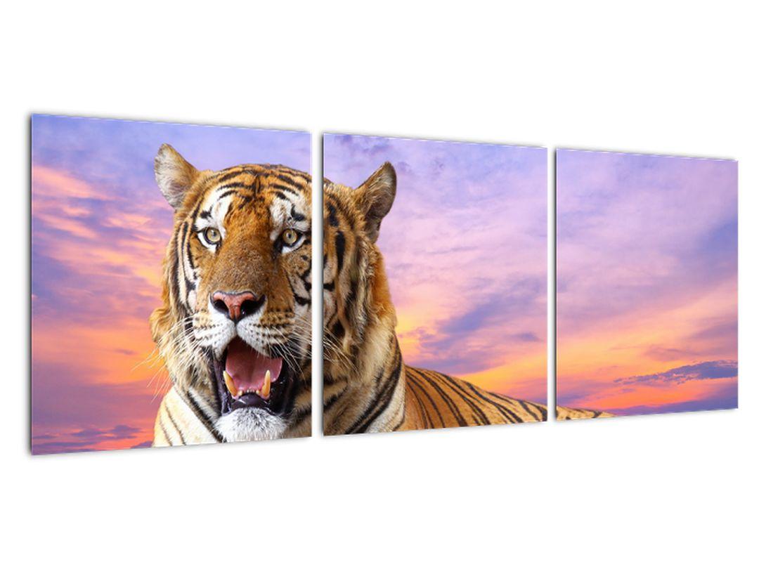 Slika - ležeči tiger
