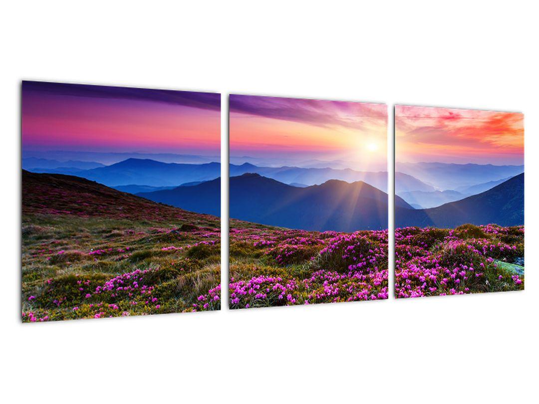 Moderne slike - gorska narava