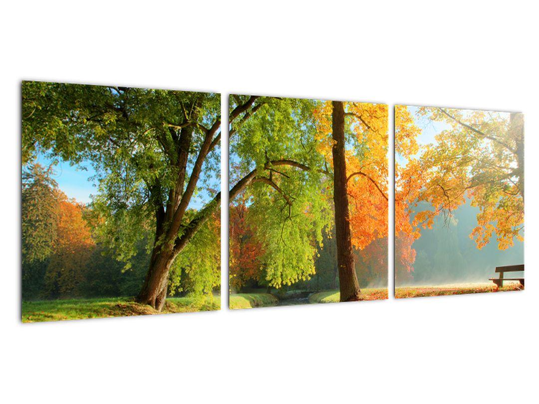 Slika - gozd