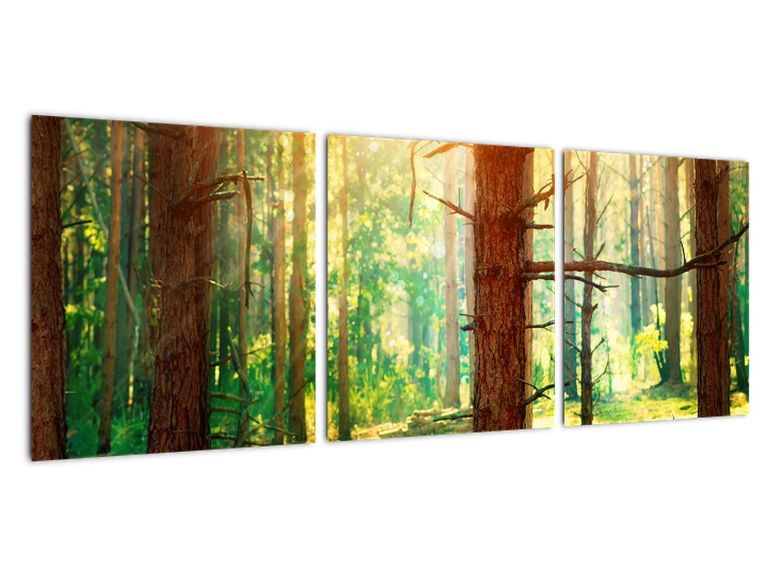 Moderna slika - gozd