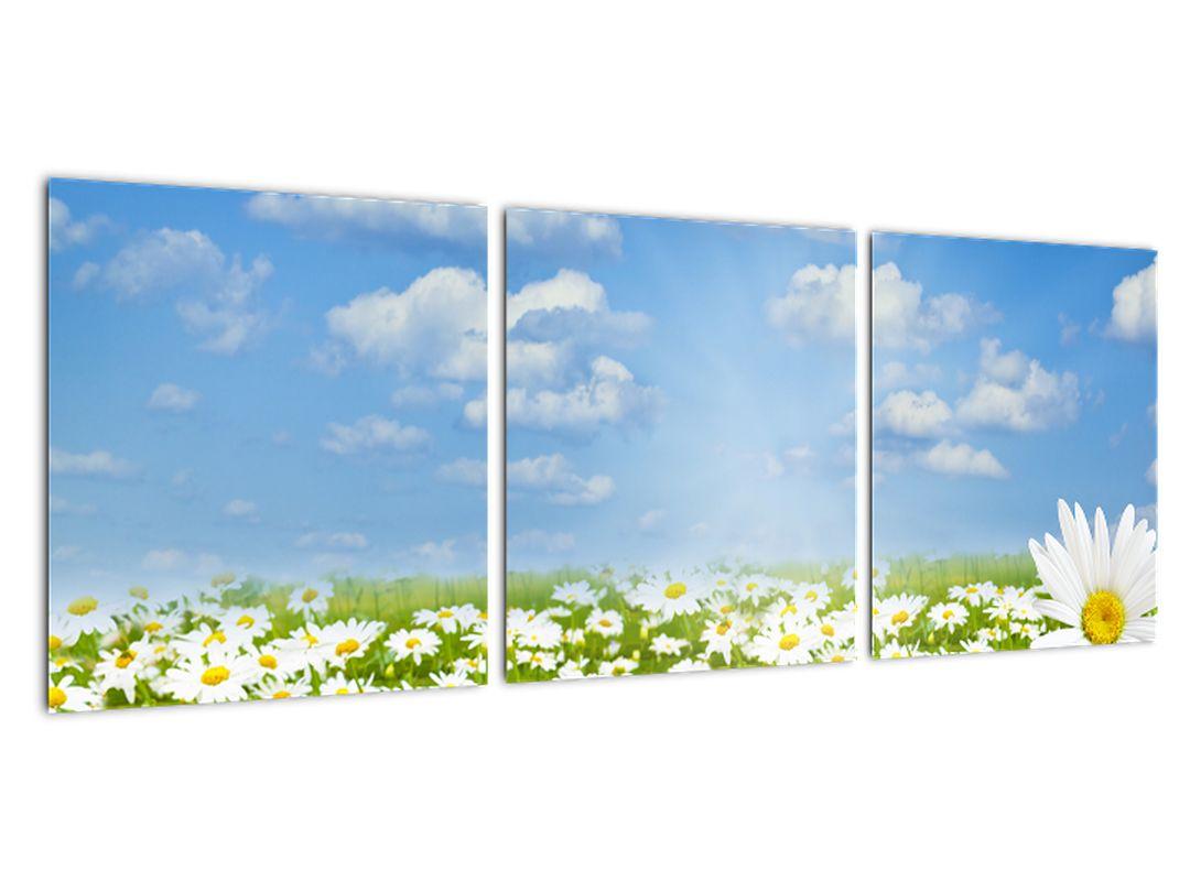 Marjetice na travniku - moderna slika