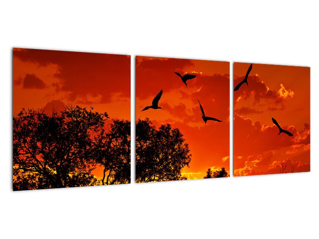 Slika - zahajajoče sonce s pticami