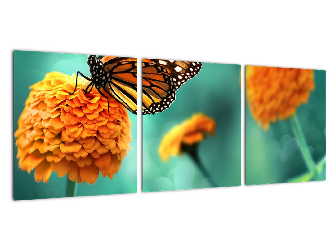 Slika - rože
