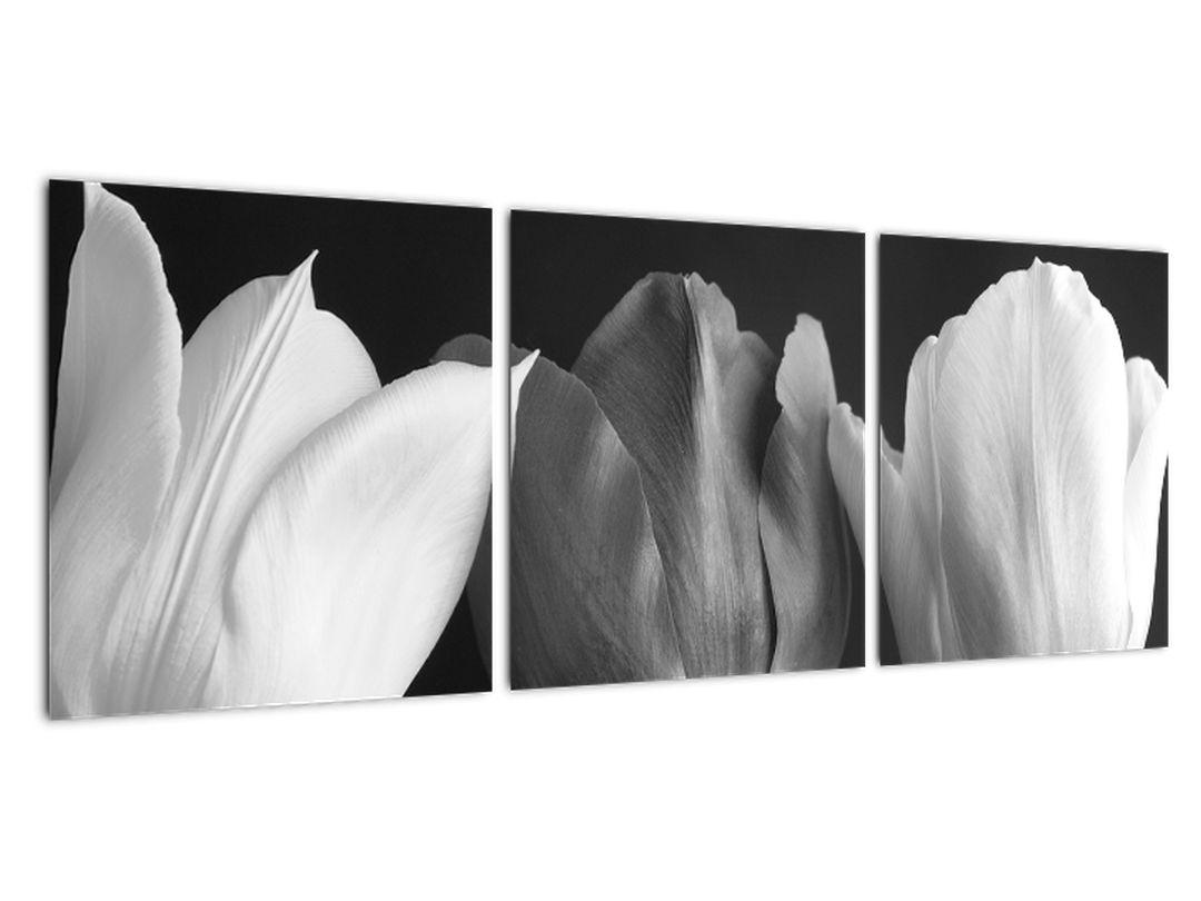 Slika - trije tulipani