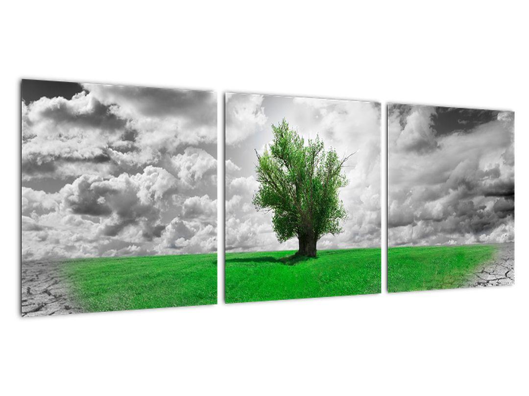 Zeleni otok v sušni pokrajini - moderna slika