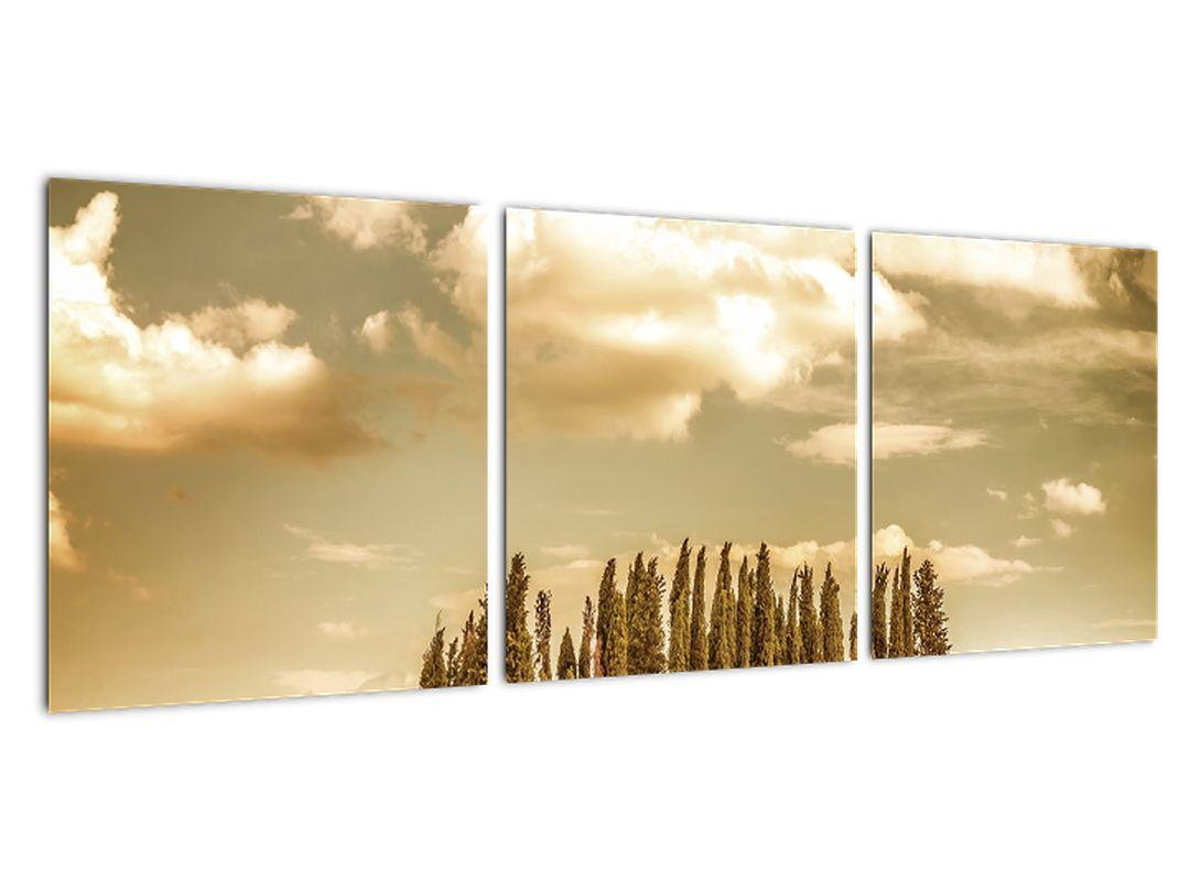 Slika - otoček dreves sredi polja